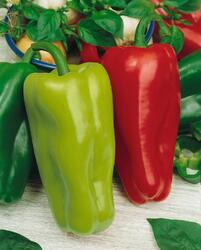 Pepper Rubínova 10g
