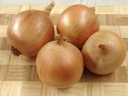 Onion  Stalagmit F1 10g