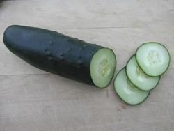 Okurka salátová Lili F1 10g - 2