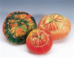 Cucurbita Large-fruited Turks Turban 5g - 2